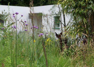 landelijke tuin doorkijk