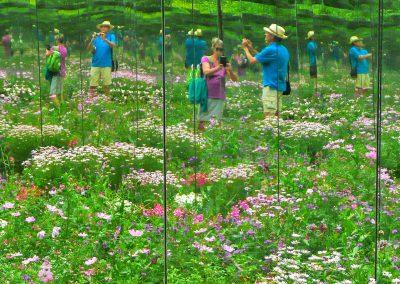 over ons mensen in spiegel in bloemenpracht